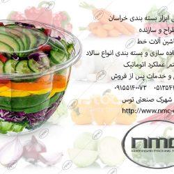 salad-tak110
