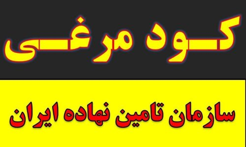 مرغی.پلت مرغی.تامین نهاده ایران تلفن 05138652312