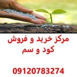 بهترین فروشگاه کود و سم کشاورزی در کرمان,مرکز خرید و فروش کود و سم کشاورزی در کرمان,قیمت کود و سم