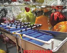 دستگاه شستشو سبزی و میوه