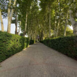 2300 متر باغ با سند تک برگ در شهریار