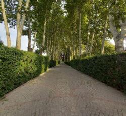 2300 متر باغ با جواز ساخت ویلای فاخر در محمدشهر کرج