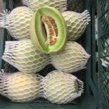 فوم پلی اتیلن توری برای بسته بندی  میوه ها ومحصولات صادراتی شکستنی 09190768462
